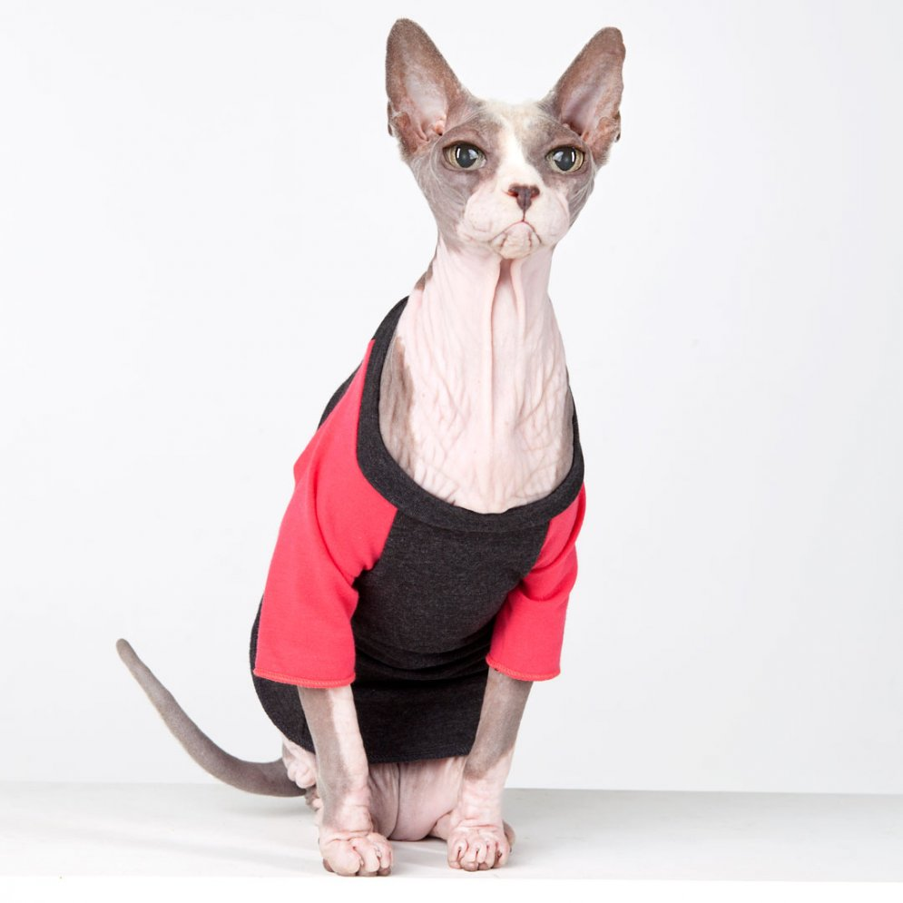 sphynx-cat-clothes-Vintage-TBall-Neon-Pink-sphynx-cat-wear