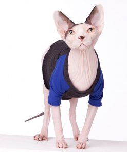 sphynx-cat-clothes-Vintage-TBall-Blue-sphynx-cat-wear