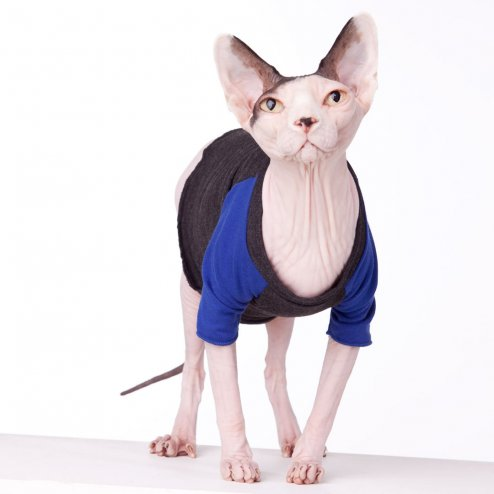 sphynx-cat-clothes-Vintage-TBall-Blue-sphynx-cat-wear