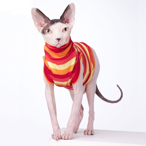 sphynx-cat-clothes-Cherry-Pop-Crew-Turtle-Neck-sphynx-cat-wear