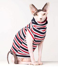 sphynx-cat-clothes-Catamaran-sphynx-cat-wear