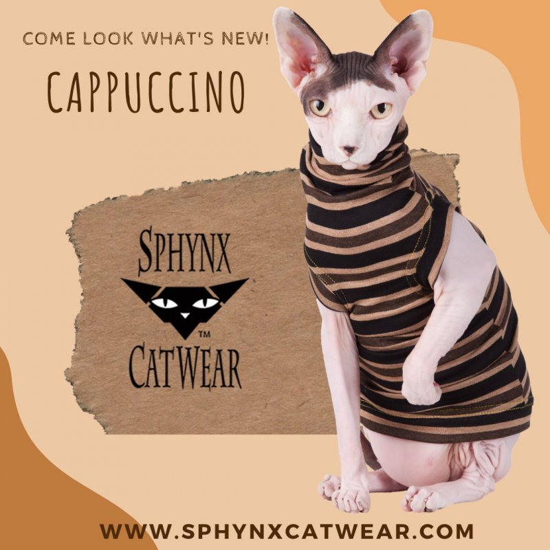 sphynx-cat-clothes-home-out-meow-sphynx-cat-wear