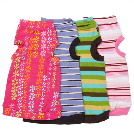 sphynx-cat-clothes-Fiji-Lavender-Kiwi-Candy-Jr-Combo-sphynx-cat-wear