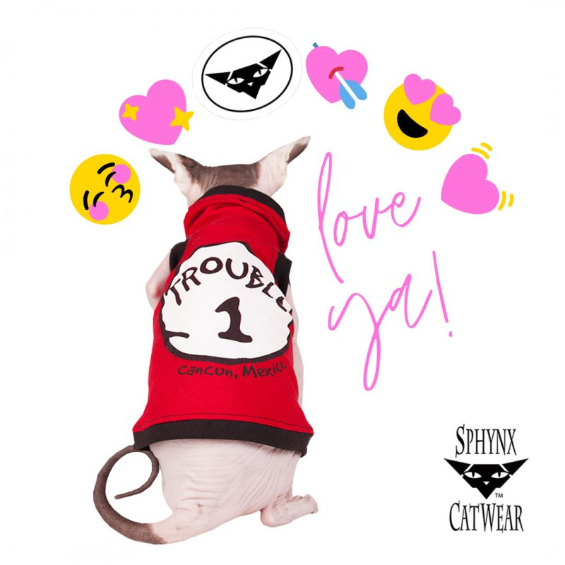 sphynx-cat-clothes-valentine-sphynx-cat-wear