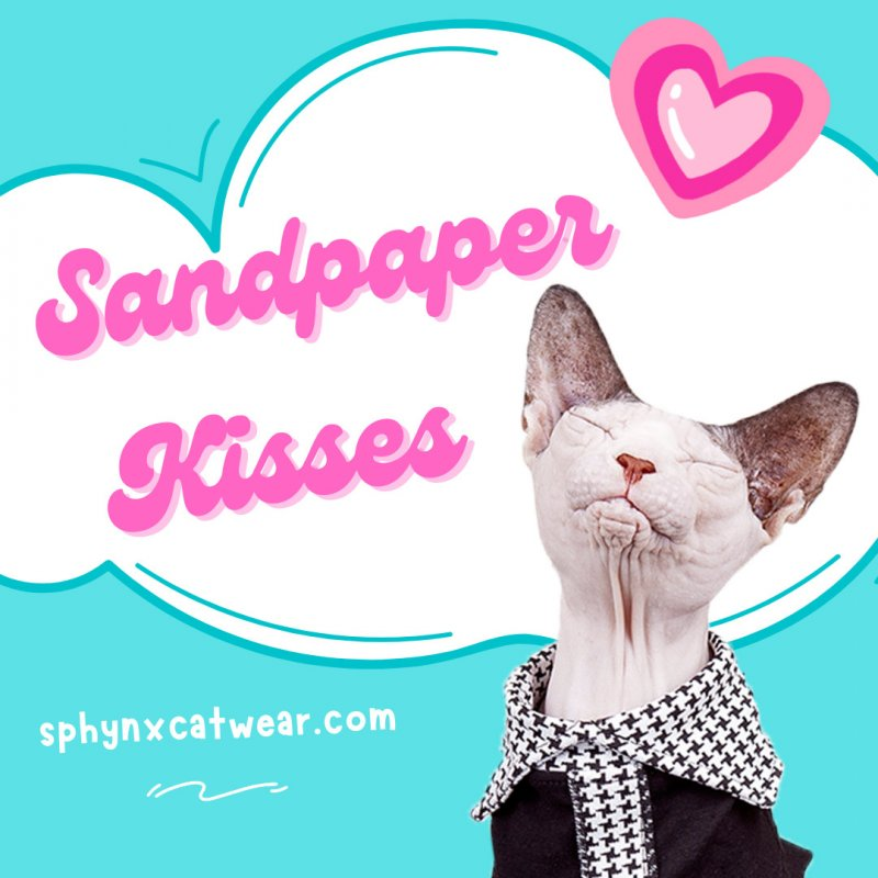 sphynx-cat-clothes-mothersday-sphynx-cat-wear